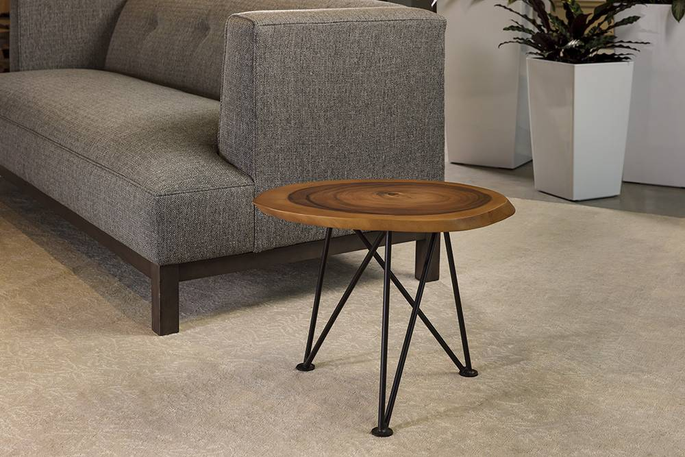 Acacia Freeform Low Table