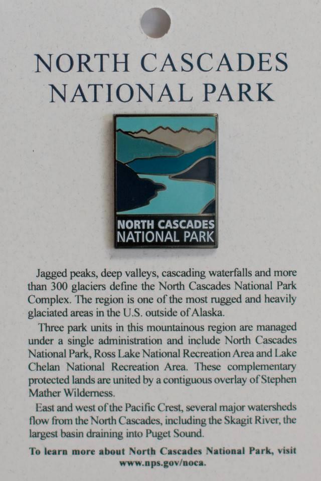 NCNP pin