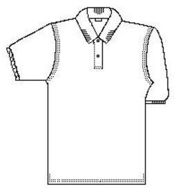 St. Philip Junior Polo