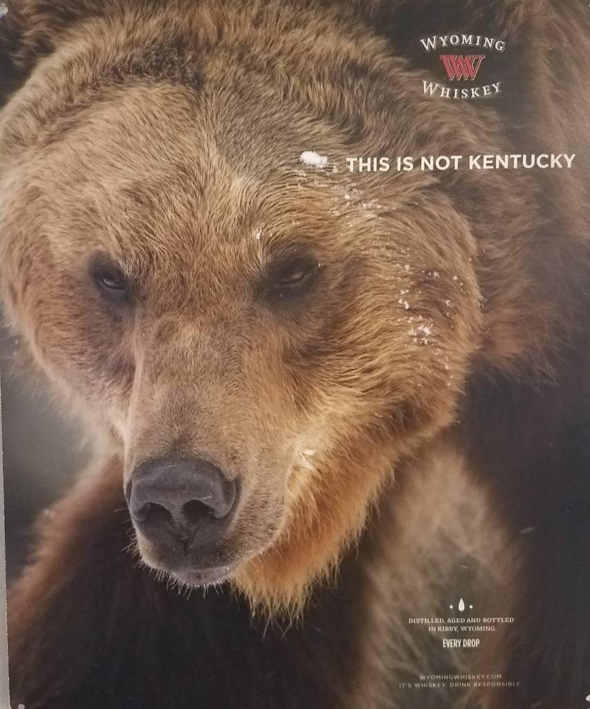 May Co Metal Tacker Sign Bear