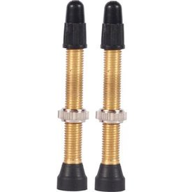 WTB WTB Brass TCS Valve: 34mm, Pair