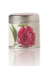Rosy Rings Soy Tin Candle