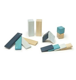 Tegu 14 Piece Set Magnetic Blocks