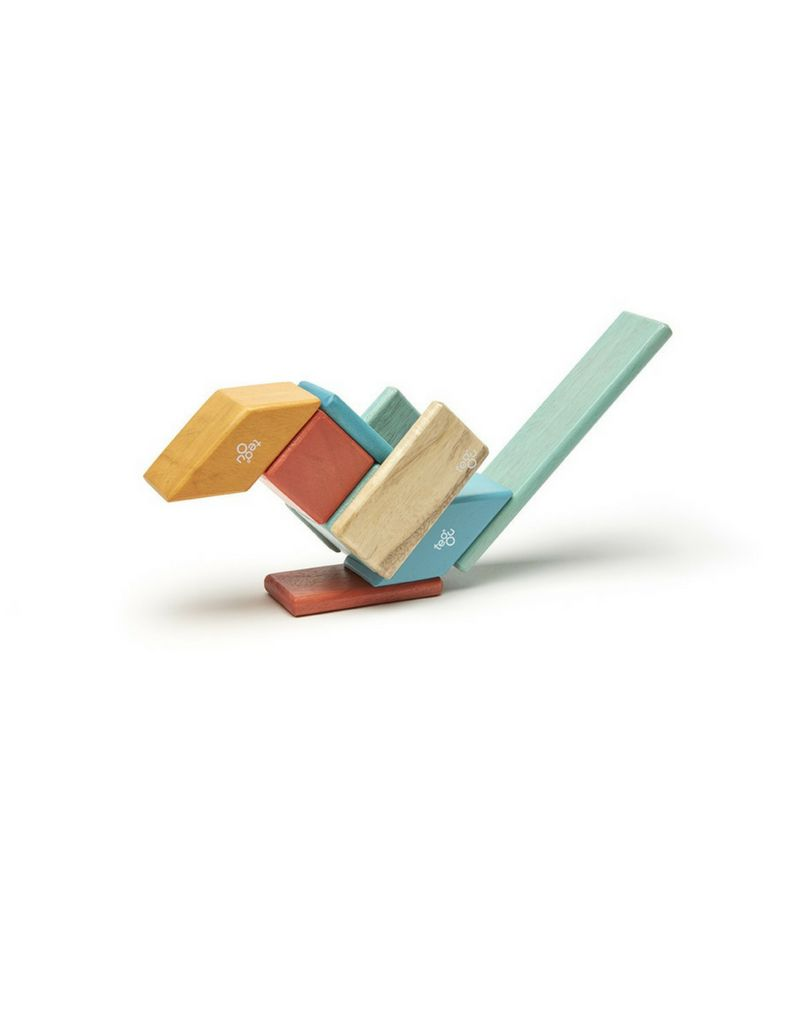 Tegu Tegu 14 Piece Set Magnetic Blocks