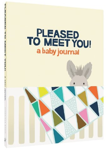 Pleased to Meet You!: a baby journal