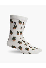 Richer Poorer Prickly Men's Socks