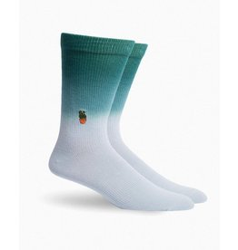 Richer Poorer Peace Cacti Men's Socks