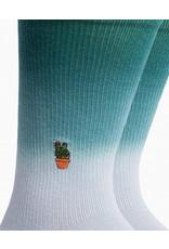 Richer Poorer Peace Cacti Men's Socks