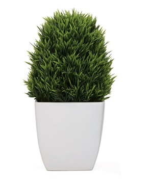 Torre & Tagus TAPERED CERAMIC POTTED GRASS - LARGE