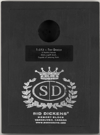 Sid Dickens Tiny Dancer