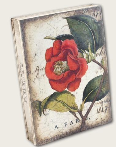 Sid Dickens Red Camellia