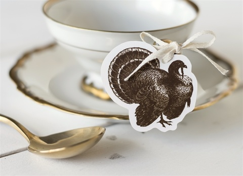 Hester and Cook Turkey Charm pack 12