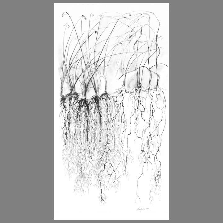 """Troy Corliss Tall Grass Print- 65"""" X 38"""" (unframed)"""