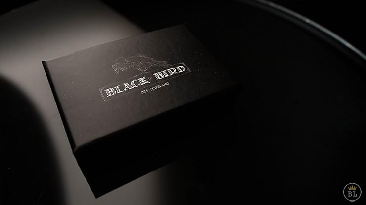 Murphy's Blackbird by Jeff Copeland