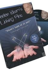Linking Pins by Gaetan Bloom