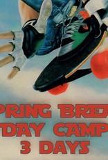 Southside 3 Days Spring Break Skate Camp