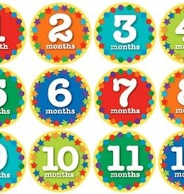 functional accessory z Sticky Bellies 1st year milestone stickers, nifty neutrals