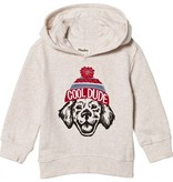 boy hooded pullover