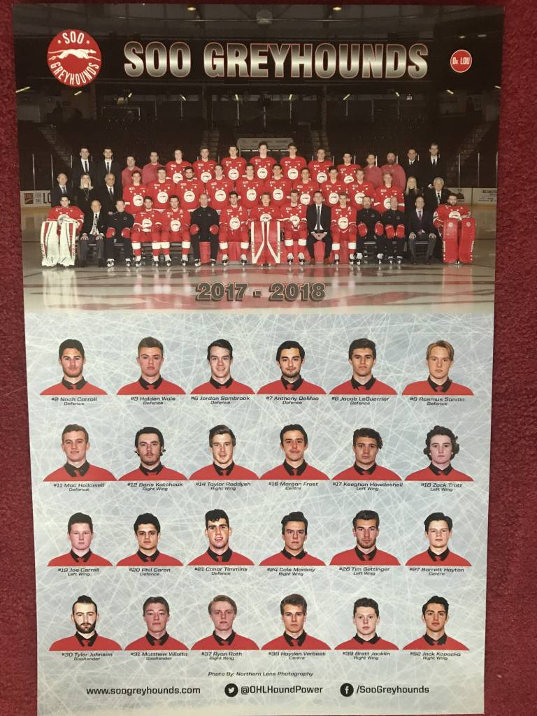 Team Picture Poster