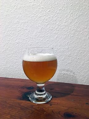 Not a Citra Pale Tasting Notes