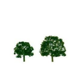 """JTT (JTT) Prem Tree, Walnut 5"""" (1)"""