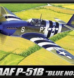 Academy/Model Rectifier Corp. (ACY) 1/48 P-51B 70th Anniversary of Normandy Invasion