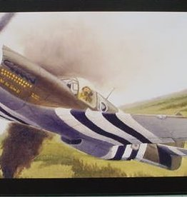 Accurate Miniatures (ATE) 1/48 F-6B Tac Recce Mustang