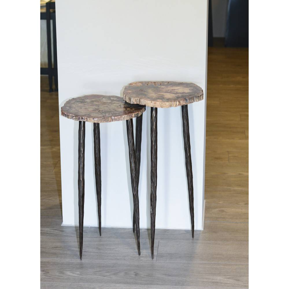 James Vilona Petrified Wood Two Piece Nesting Table