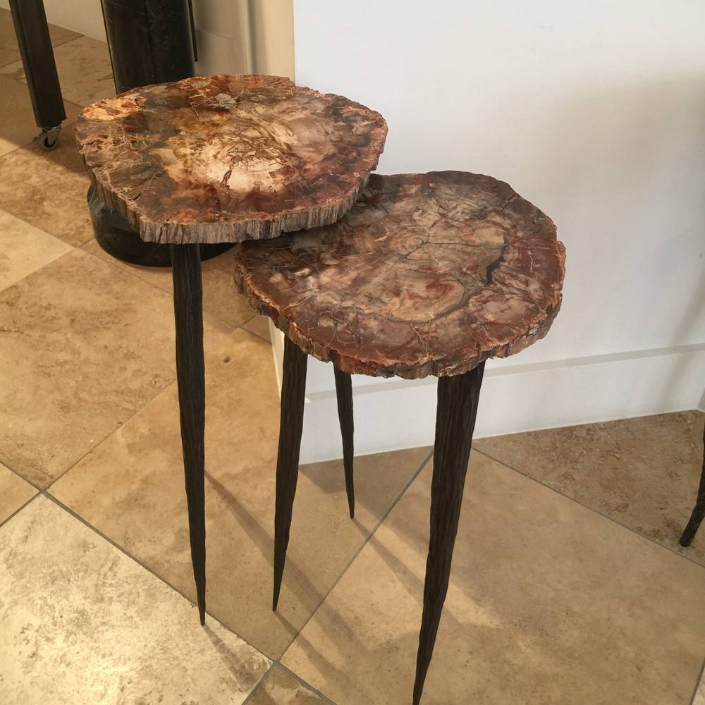 Top 28 Petrified Wood Nesting Tables By Group Of Coffee Table