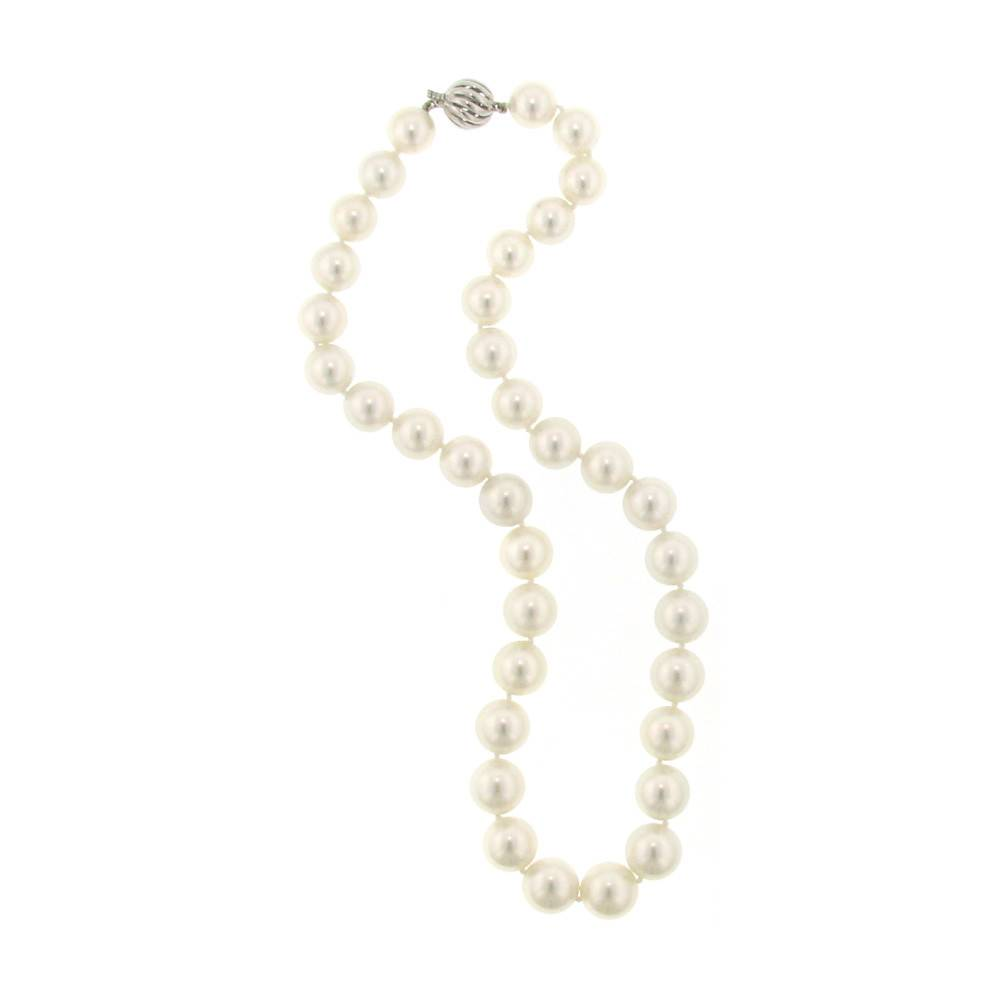 Assael South Sea round cultured pearl strand with white gold clasp