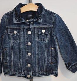Blue and Blu Boy Distressed Denim Jacket
