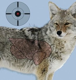 Birchwood Casey BWC Dirty Bird PreGame Animal Targets Coyote 16.5x24 Inch 3 Per Package