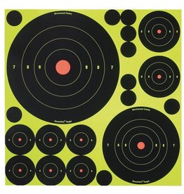 Birchwood Casey BWC Shoot-N-C Targets Variety Pack 50 Targets 50 Pasters