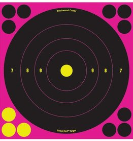 Birchwood Casey BWC Shoot-N-C Pink Reactive Target 8 Inch Bullseye 30 Per Package