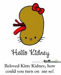 You Gotta be Kidney me?!?!