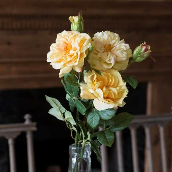 Gathered Garden Roses Yellow HY1231Y