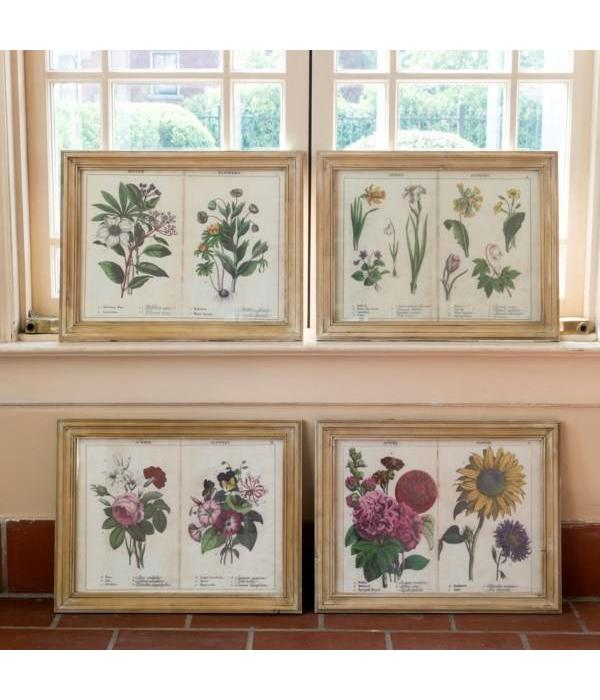 Park Hill Framed Four Seasons Page Print