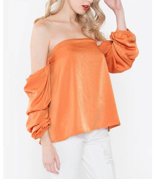 Ruffle Sleeve Top 13881