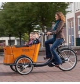 Babboe Babboe Curve Mountain Electric Family Cargo Trike