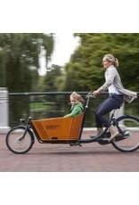 Babboe Babboe City Mountain Electric Family Cargo Bike