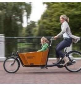 Babboe Babboe City Mountain Electric Family Cargo Bike