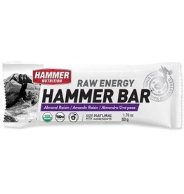 Hammer Nutrition Hammer Nutrition Bar Almond Rasin (Raw Energy)