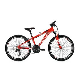 Focus Focus Raven Rookie 24Inch Red 2018