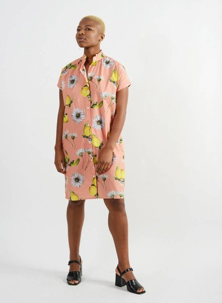 Limon Shirt Dress