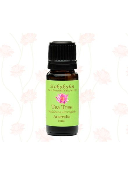 Kokokahn Kokokahn Essential Oil Tea Tree