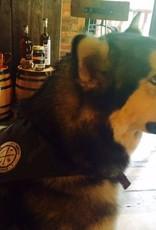 Dog Bandana Large