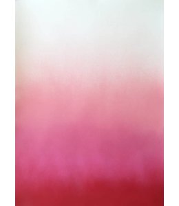 'HAZY PINK'   :  by  ANNE NOWAK : FRAMED