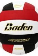 Baden Volleyball