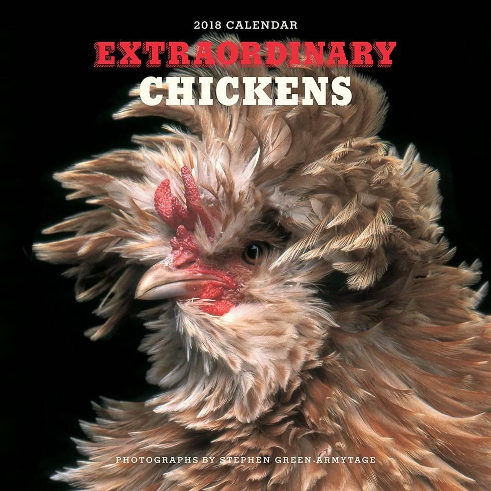 Abrams Calendars Extraordinary Chickens 2018 Wall Calendar
