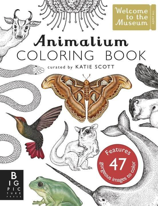 Big Picture Press Welcome to the Museum: Animalium (Coloring Book)